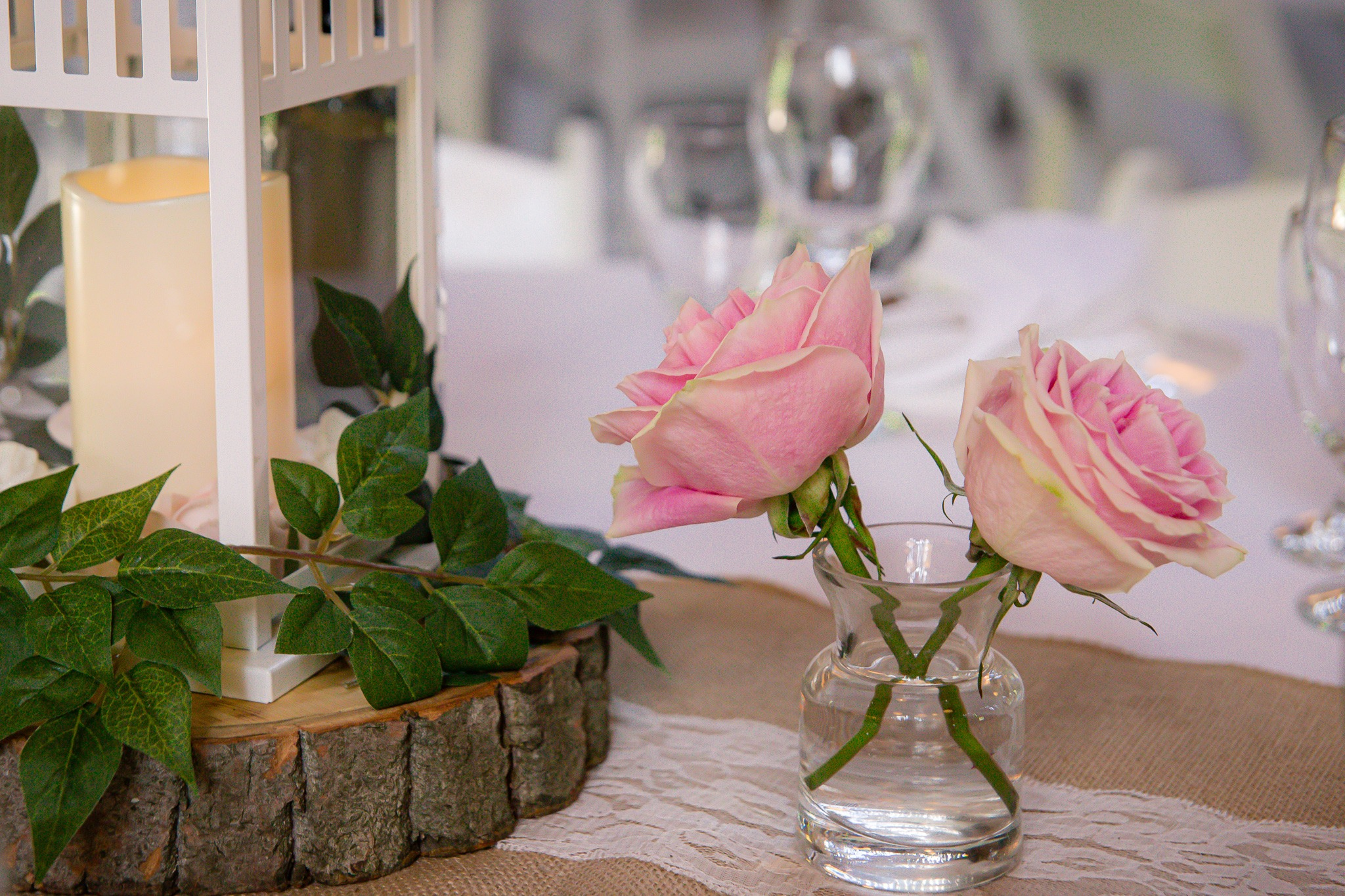 two pink roses in a vase